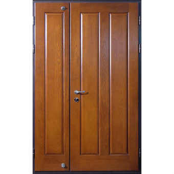 Тамбурная металлическая дверь ТТД2